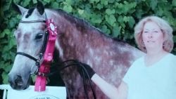 Kara Erdman and her Half Arabian Gelding, Cappucino Dream (aka Chino)!