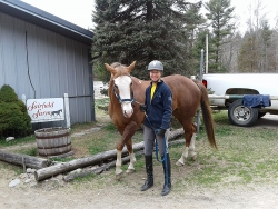 Carol Barnewolt's new Quarter Horse mare, Sequins Do Sparkle!
