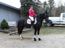 Sue Adams-Conley's young Morgan mare, Gracie Blue!