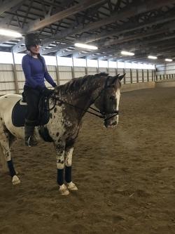 Eliza riding our Appaloosa school horse, Mr. Leonard!