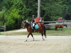 Student, Sophia Severino riding our Bobby Tucker!